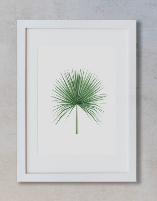 acuarela-botanica-tropical-enmarcada-decoracion-marco-vertical-suelto-camaerops
