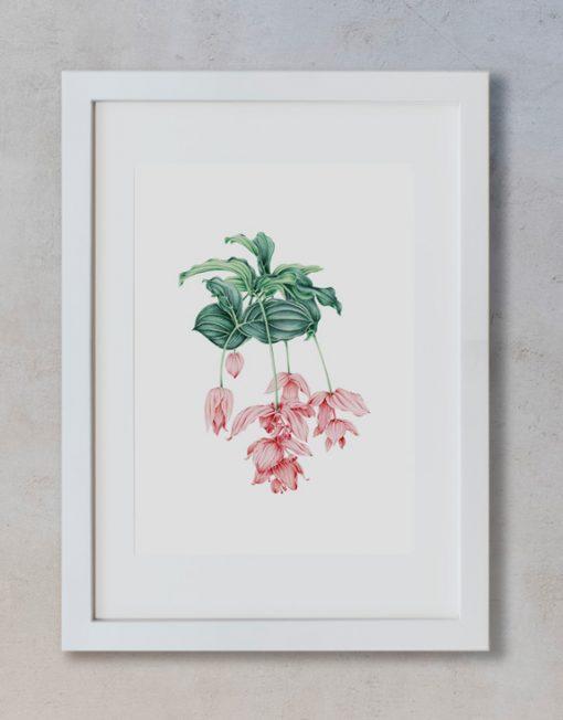 acuarela-botanica-tropical-enmarcada-decoracion-marco-vertical-suelto-medinilla