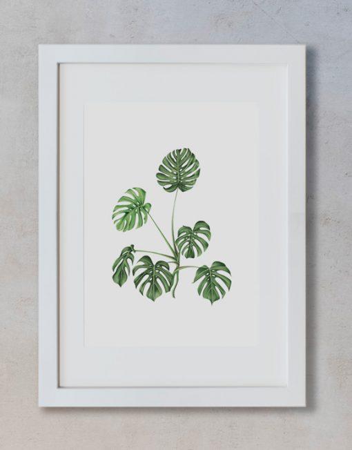 acuarela-botanica-tropical-enmarcada-decoracion-marco-vertical-suelto-monstera