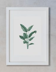 acuarela-botanica-tropical-enmarcada-decoracion-marco-vertical-suelto-paradisiaca