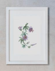 acuarela botanica tropical enmarcada decoracion marco vertical suelto passiflora