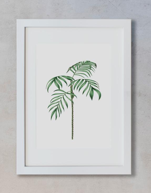 acuarela-botanica-tropical-enmarcada-decoracion-marco-vertical-suelto-ravenea