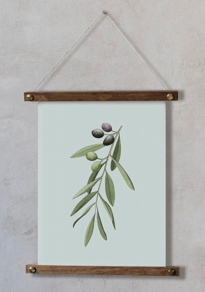 acuarela-botanica-olivos-aceitunas-campestre-lamina-decoracion