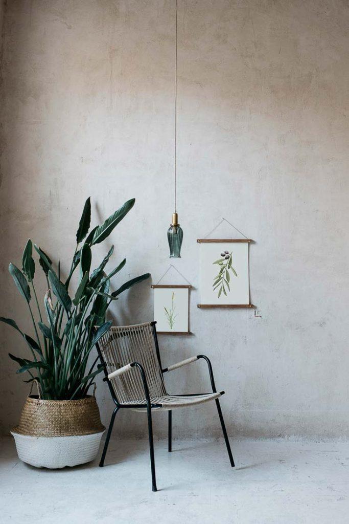 acuarela-botanica-olivos-aceitunas-campestre-lamina-decoracion-652-7
