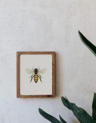 Ilustracion-acuarela-botanica-insectos-abeja-enmarcada-madera