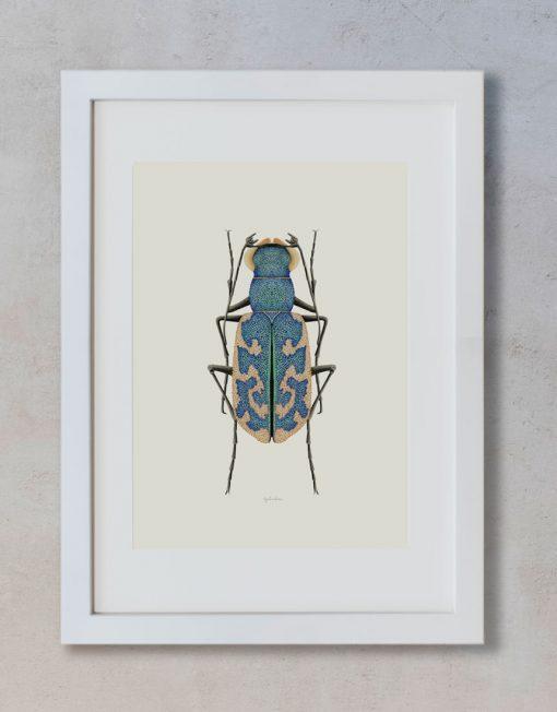 Ilustracion-acuarela-botanica-insectos-cylindera-enmarcada-blanco2