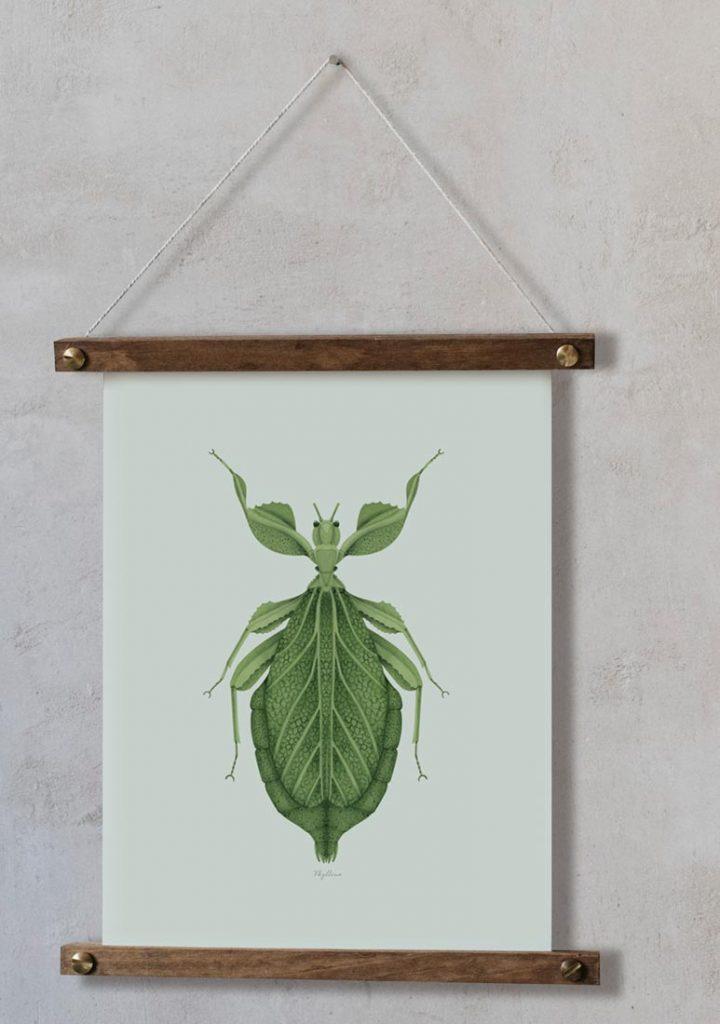 Ilustracion-acuarela-botanica-insectos-hoja-enmarcada-bastidor