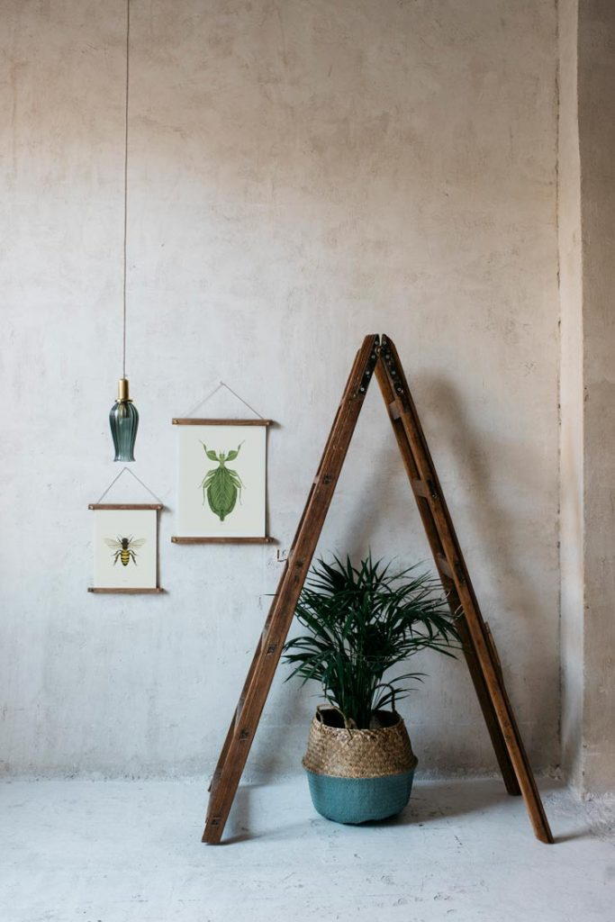 Ilustracion-acuarela-botanica-insectos-hoja-enmarcada-bastidor-escalera