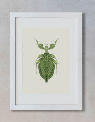 Ilustracion-acuarela-botanica-insectos-hoja-enmarcada-blanco2