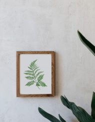 Ilustracion-Helecho-acuarela-botanica-campestre-enmarcada-madera-Filicopsida