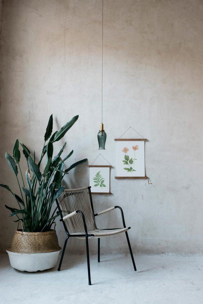 Ilustracion-acuarela-botanica-campestre-enmarcada-bastidor-Anemone-hupehensis-silla