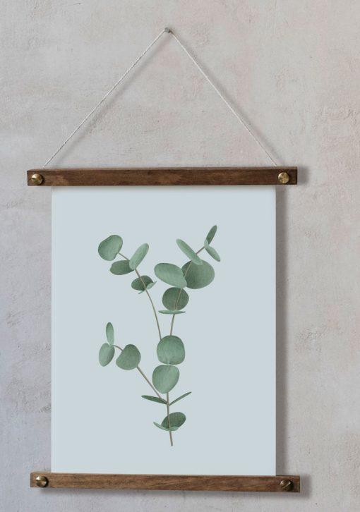 Ilustracion-acuarela-botanica-campestre-enmarcada-bastidor-Eucalyptus