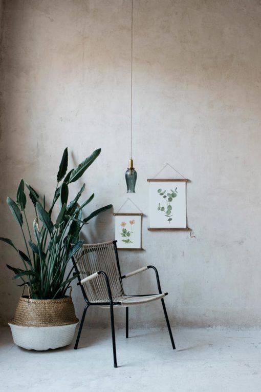 Ilustracion-acuarela-botanica-campestre-enmarcada-bastidor-Eucalyptus-silla