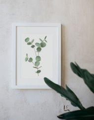 Ilustracion-acuarela-botanica-campestre-enmarcada-blanco-Eucalyptus