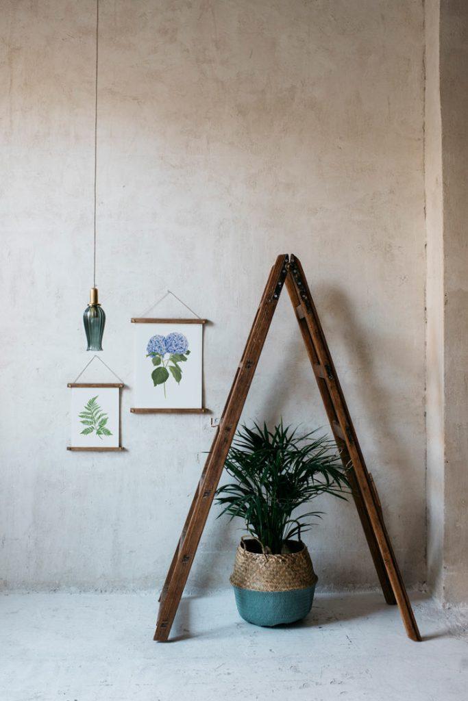 Ilustracion-hortensia-acuarela-botanica-campestre-enmarcada-bastidor-Hydrangea-azul-escalera