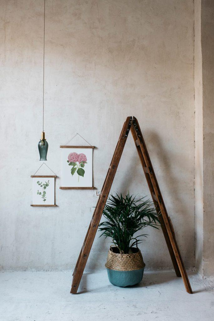 Ilustracion-hortensia-acuarela-botanica-campestre-enmarcada-bastidor-Hydrangea-rosa-escalera