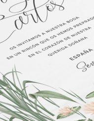 invitaciones-de-boda-acuarela-donana-paisaje-nenufares-ANV-blanco-DETALLE