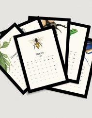 calendario-2018-bichos-con-helechos-bloc-de-notas-soporte-de-laminas-botanicas-con-abejas-3