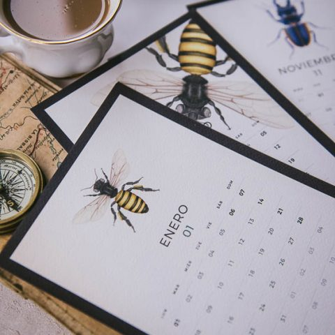 Agendas y calendarios 2018 regalo original-116