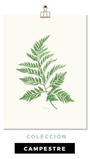 Láminas Botánicas Colección Campestre