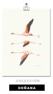 lamina-botanica-con-ilustracion-en-acuarela-coleccion-donana