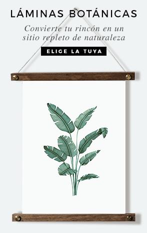laminas-botanicas-con-ilustraciones-en-acuarela