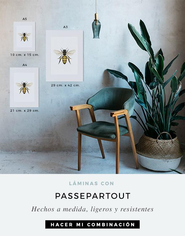 passepartout-para-laminas-botanicas-CUADRADAS