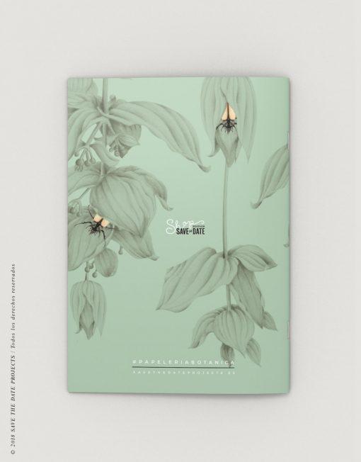 LIBRETA-dibujos-botanicos-selva-tropical-medinilla-escarabajo-CONTRAPORTADA