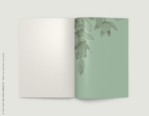 LIBRETA-dibujos-botanicos-selva-tropical-medinilla-escarabajo-INTERIOR-der