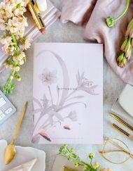 Libretas y cuadernos notebooks bullet journal ilustraciones-7