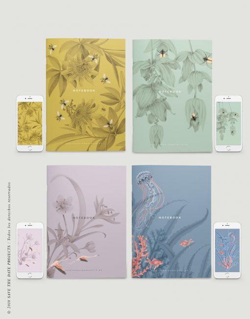 PACK-4-LIBRETA-dibujos-botanicos-abejas-passiflora-medinilla-medusas-1