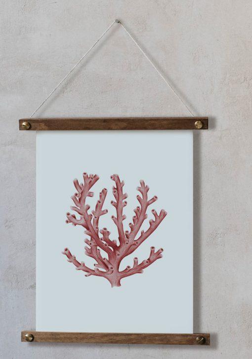 acuarela-botanica-boda-coral-oceano-palitos-LOPHELIA-PERTUSA-ROJO