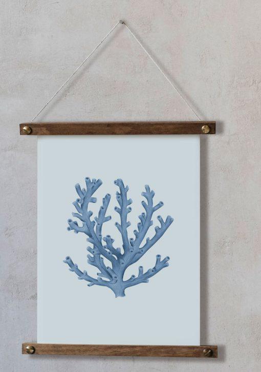 acuarela-botanica-coral-azul-oceano-palitos-LOPHELIA-PERTUSA-AZUL