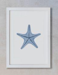 acuarela-botanica-estrella-mar-azul-marco-blanco-ASTEROIDEA-AZUL