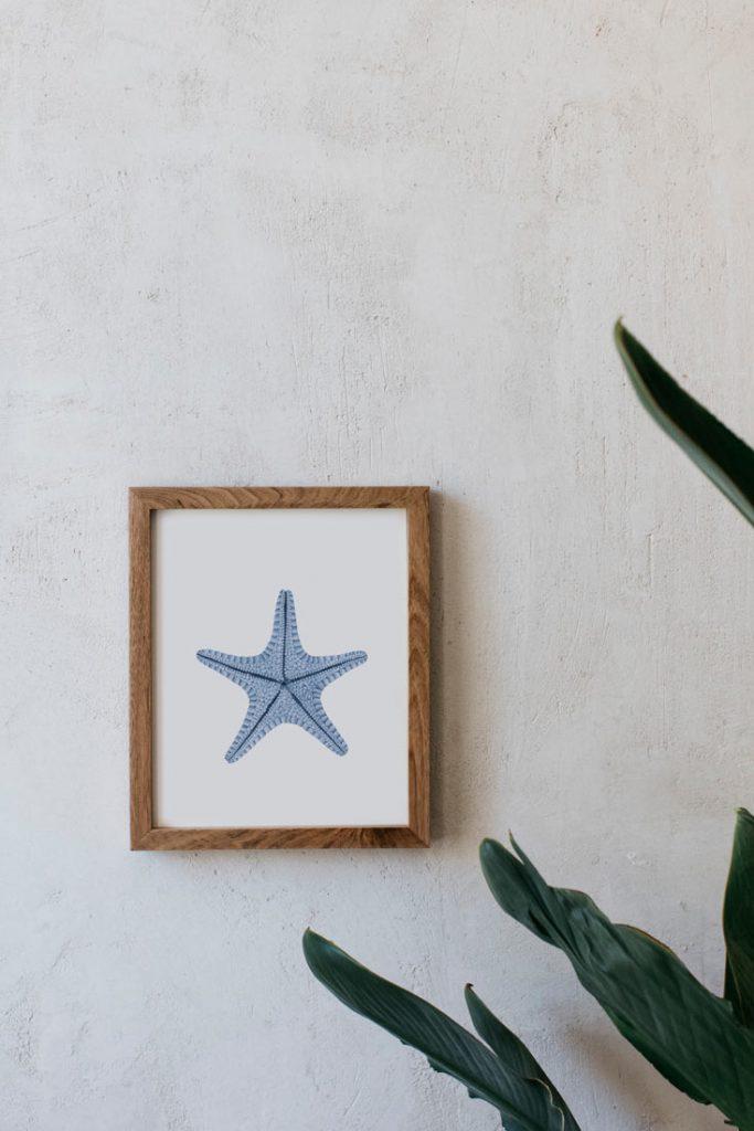acuarela-botanica-estrella-mar-azul-marco-madera-ASTEROIDEA-AZUL