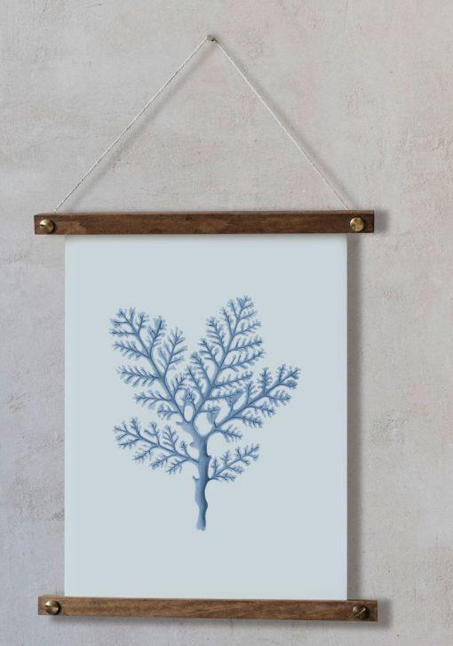 acuarela-coral-mar-boda-bastidor-de-madera-decoracion-pared-GORGONIA