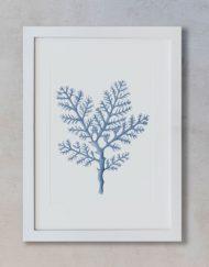 acuarela-coral-mar-boda-marco-blanco-vertical-suelto-MAR-GORGONIA