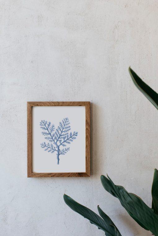acuarela-coral-mar-boda-marco-madera-1-GORGONIA