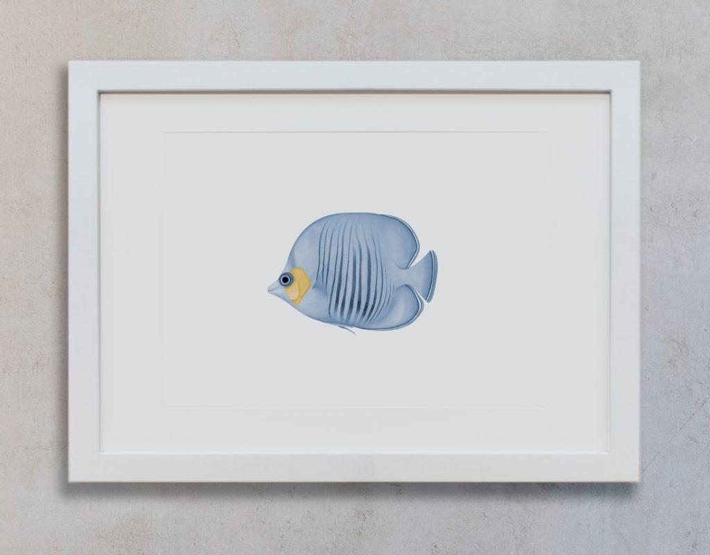 decoracion-interiores-lamina-botanica-pez-azul-marco-blanco-vertical-suelto-MAR-POISSON-PAPILLONS