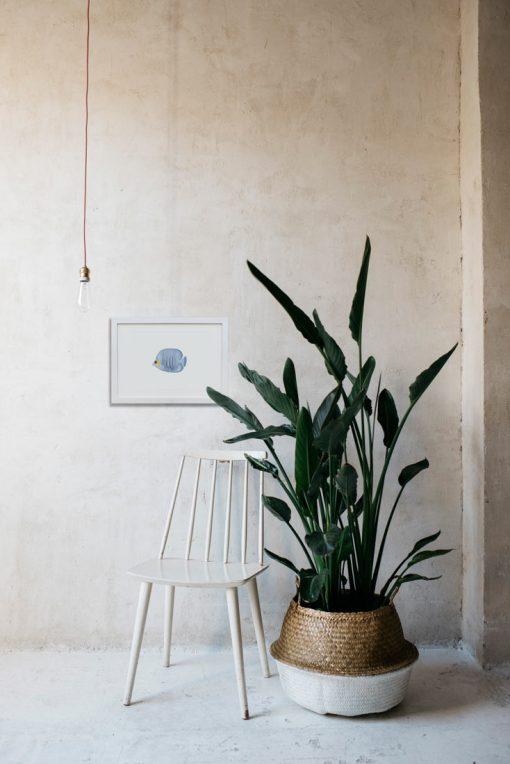 decoracion-interiores-lamina-botanica-pez-azul-silla-blanca-1-HORIZONTAL-POISSON-PAPILLONS