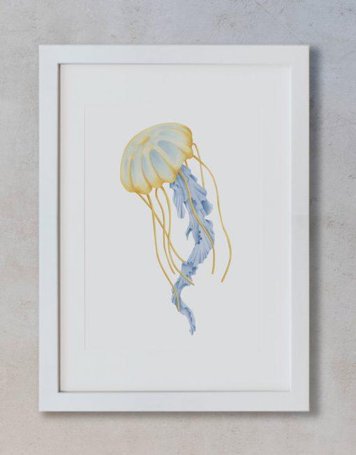 dibujo-medusa-botanica-acuarela-marco-blanco-vertical-suelto-MAR-CYANEA-CAPILLATA-AMARILLO