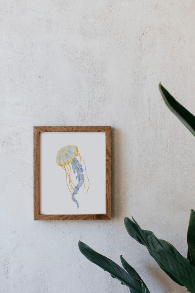 dibujo-medusa-botanica-acuarela-marco-madera-1-CYANEA-CAPILLATA-AMARILLO