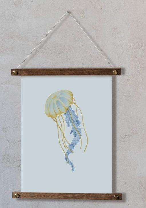 dibujo-medusa-botanica-acuarela-palitos-CYANEA-CAPILLATA-AMARILLO