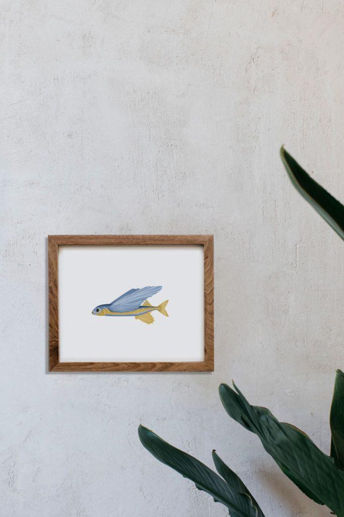 lamina-pared-pez-volador-botanico-a-mano-HORIZONTAL-EXOCOETIDAE