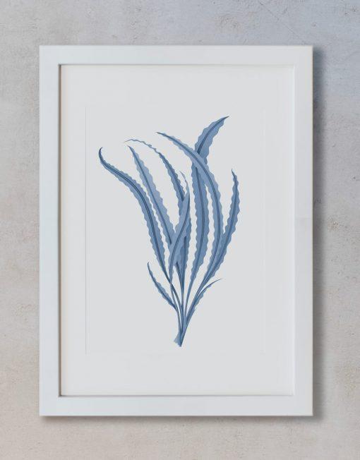 lamina-regalo-alga-acuarela-marco-blanco-vertical-suelto-MAR-ALGA