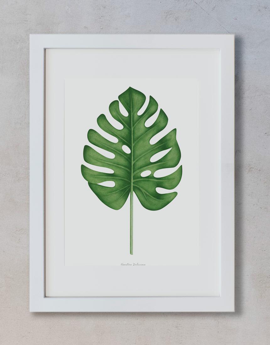 Dibujos Con Acuarelas De Plantas Y Flores Botanicas Decora Tu Hogar