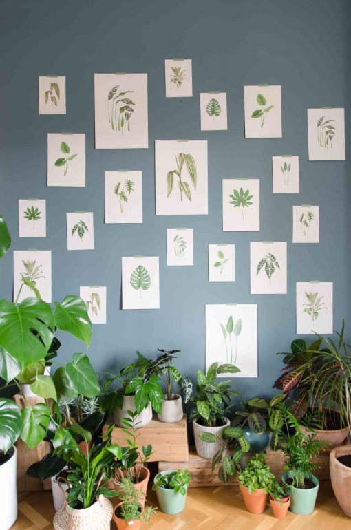 Regalos Originales 2019 - Save the date projects the botanical nook plantas interior-142