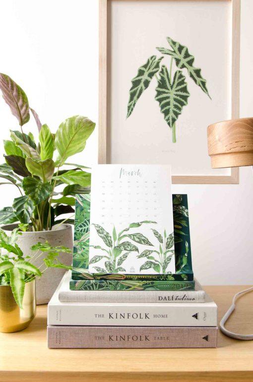 Regalos Originales 2019 - Save the date projects the botanical nook plantas interior-31