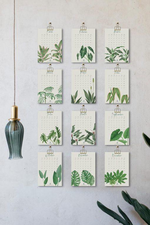calendario-2019-plantas-verdes-de-interior