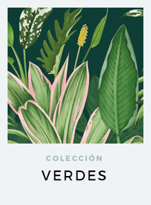 regalos-originales-the-botanical-nook-coleccion-ilustraciones-botanicas-VERDES-DE-INTERIOR